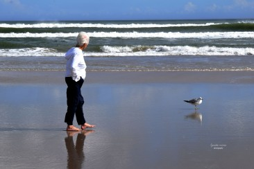 Talking and Walking with Seagull on Daytona Beach