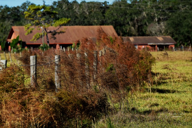 Old Barn Alongside Rt 44