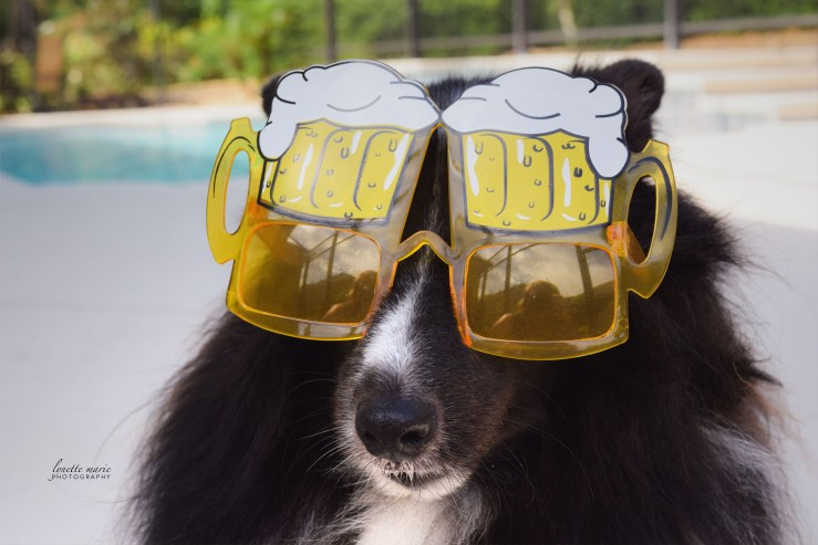 Ace Rocking the Beer Goggles